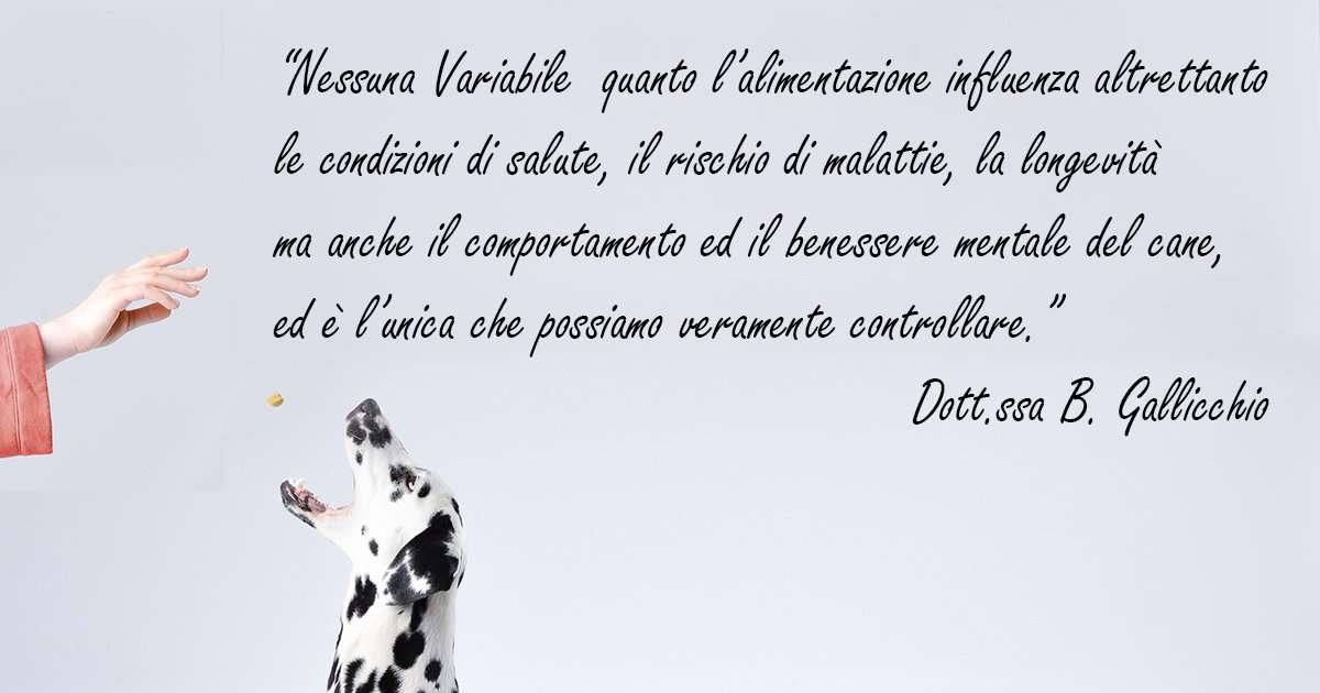 """""""Nessuna Variabile quanto l'alimentazione influenza altrettanto le condizioni di salute, il rischio di malattie, la longevità ma anche il comportamento ed il benessere mentale del cane, ed è l'unica che possiamo veramente controllare."""" Dott.ssa B. Gallicchio"""